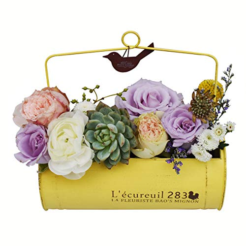 Yellow Country Rustic Hanging Metal Small Planter Windowsill Balcony Tabletop Wall Decor Iron Bucket Flower Pot for Indoor Outdoor Herb Succulents Plants