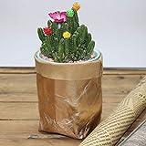 Gaddrt Washable Kraft Paper Bag Plant Flowers Pots Cover Multifunction Reuse Home Storage Bag Rose Gold