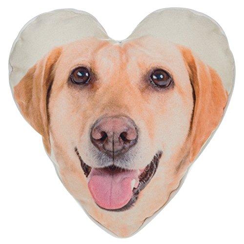 Visage Collection Heart Cushion Goldn Lab (Visage Labs)
