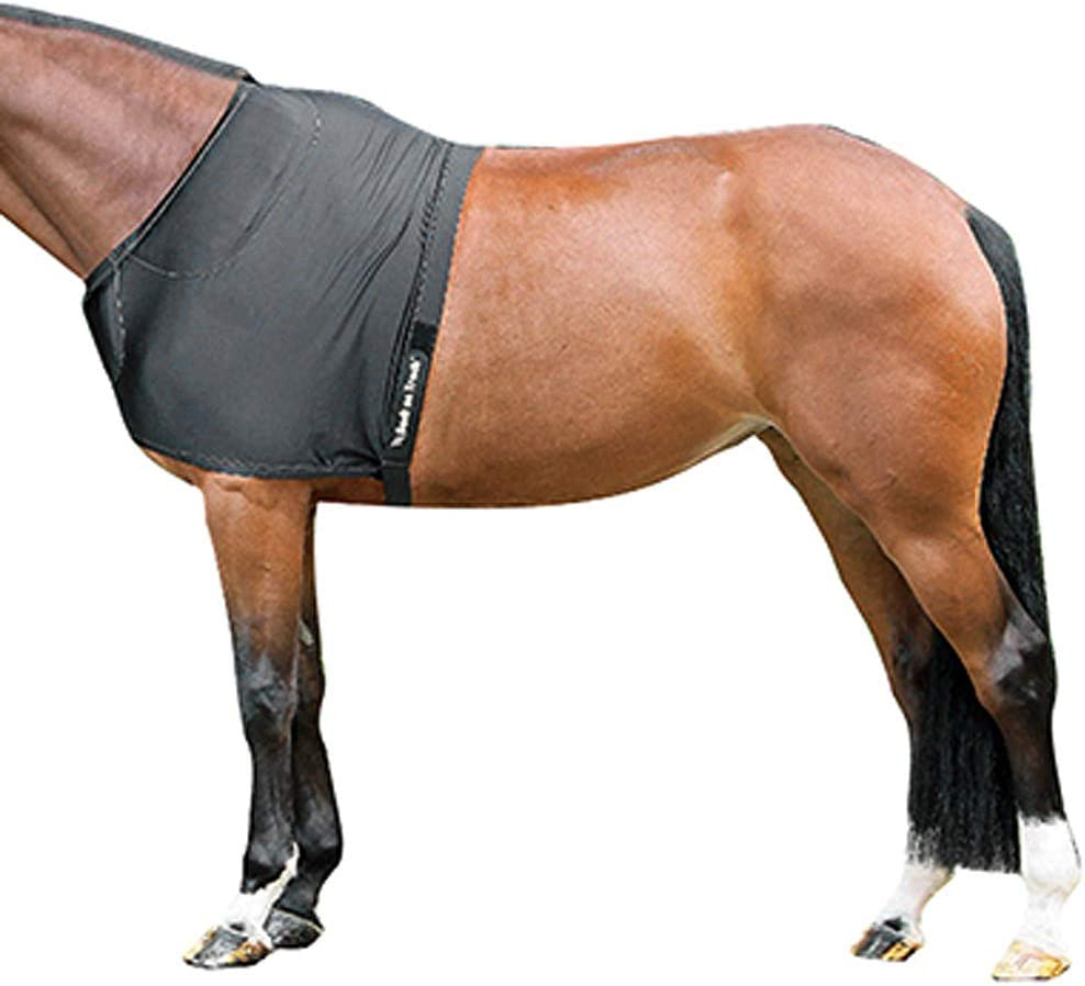 Back on Track Therapeutic Equine Shoulder Guard