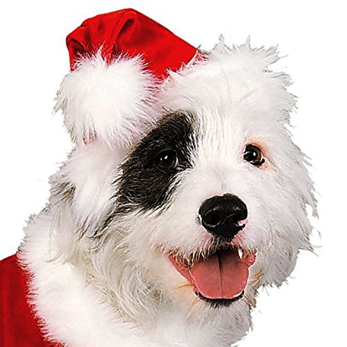 Rubie's Christmas Pet Costume, Santa Claus, Large - http://coolthings.us