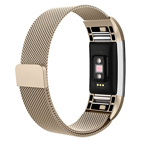 Fitbit Charge AK Replacement Accessories