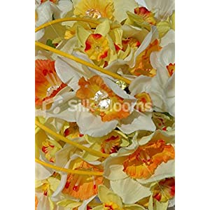 Yellow & Orange Daffodil White Narcissus Bridesmaid Posy Bouquet 2