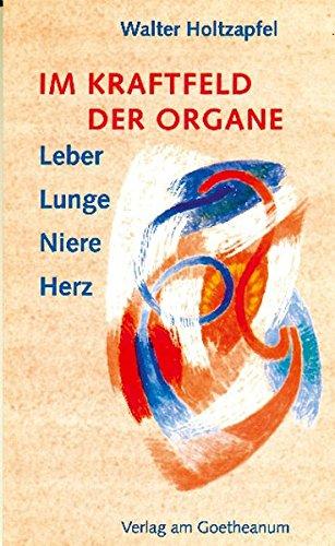 Im Kraftfeld der Organe: Leber, Lunge, Niere, Herz
