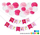 hot pink party decorations - 19 DIY Pink Birthday Party Decorations: 18 Tissue Paper Flower Pom Poms + 1 Happy Birthday Banner for Girls and Women. Hot Light Pink White Gold. Unicorn, Princess, Paris Theme