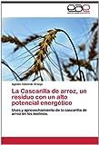 La Cascarilla de Arroz, un Residuo con un Alto Potencial Energético, Agustin Valverde Granja, 3659021830
