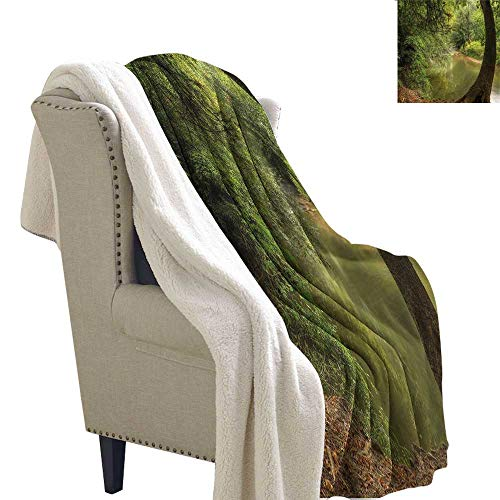 (AndyTours Wool Blanket Nature Enchanted Forest with Trees Gift Throw Blanket for Women Men W59 x L78)