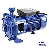GENPAR - 3 HP - Heavy Duty Centrifugal Electric Water Pump - Iron cast Pump. Dual Voltage 110/220 - 1 phase MOTOR. 1.25