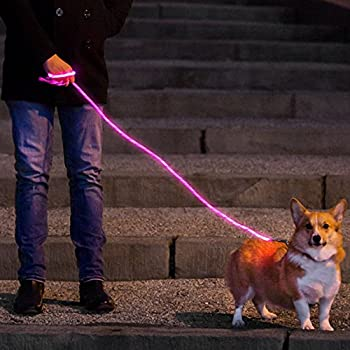 Amazon.com : Nitey Leash - LED Glow in the Dark Pet Dog