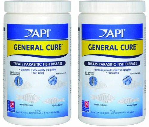 API General Cure Bulk Powder 1700g (2 x 850g) by API