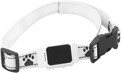XDYFF Rastreador Tractive GPS para Perros y Gatos Track Tor ...