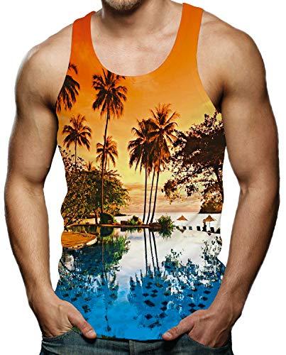 Cool Tank Tops for Men Gym Shirt Summer Sleeveless Shirt Hawaiian Sunset Graphic Tee M