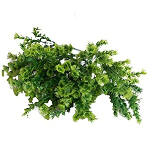Artificial Plants, Plastic Artificial Mimosa Green Plant Leaf Bouquets Gifts Wedding Party Kitchen Home Office Hotel Shop Cafe Decor 45