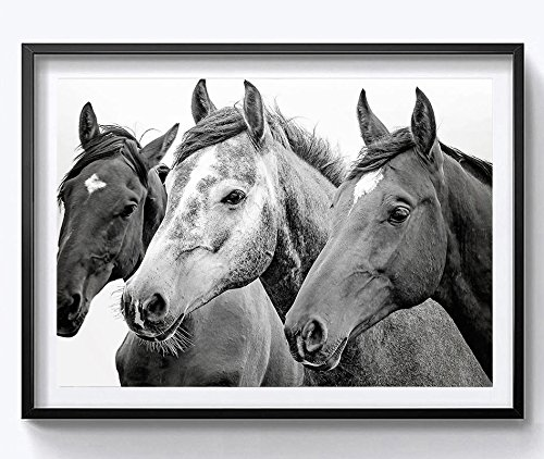 HYD Art Black And White Horse Farmhouse Canvas Poster for Home Decoration 8 x 10 Inches,Stretched and Ready to Hang (Horse White Farm)