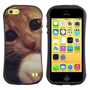 All-Round híbrido de goma duro caso cubierta protectora Accesorio Generación-I BY RAYDREAMMM - Apple iPhone 5C - Cute Sad Frightened Kitten Cat Paw Eyes