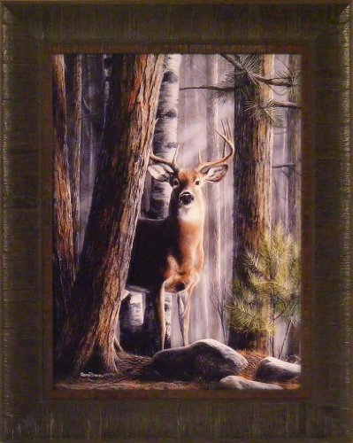 Solitary Buck by Kevin Daniel 17x21 Whitetail Deer Trees Framed Art Print Wall Décor Picture