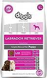 Drools Labrador Puppy Premium Dog Food, 4 kg