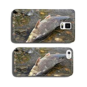 fish kill cell phone cover case Samsung S6