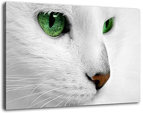 gato blanco bebe leche, imagen de la lona, ??tamaño: 60x40 cm pintura, revestidos de tela, ...