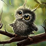 Gracefulvara 5D Cute Owl Diamond Embroidery Painting Home Decor Cross Stitch DIY Craft