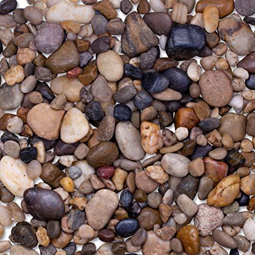 GuroBust 4-lb. Decorative River Rocks, Pebbles for Succulent Plants, Natural Stones Pea Gravel for Terrarium, Cactus Plants, Bonsai Tree, Vase Fillers, Painting, Small to Large Sizes. (4 lb.)
