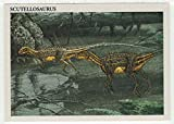 Scutellosaurus - Dinosaurs: The Mesozoic Era (Trading Card) # 45 - Redstone Marketing 1993 Mint