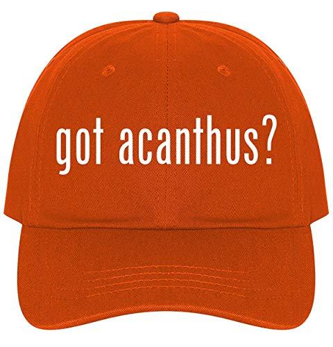 (The Town Butler got Acanthus? - A Nice Comfortable Adjustable Dad Hat Cap, Orange)