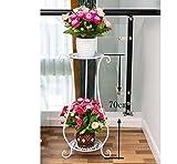 AIDELAI flower rack Iron flower frame multi-storey floor-style balcony indoor living room flower Patio Garden Pergolas (Color : White, Style : B)