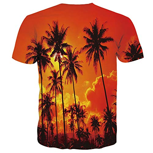 RAISEVERN Unisex Damen Herren Sommer T Shirts Grafik 3D Urlaub Kurzarm Tops Paar Tees