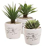 coffee plant pot - 4 inch Rustic White Ceramic French Parisian Postcard Tabletop Succulent / Herb Planter Pots (Set of 3)