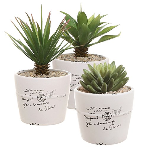 4 inch Rustic White Ceramic French Parisian Postcard Tabletop Succulent/Herb Planter Pots (Set of 3) (Plant Postcard Vintage)
