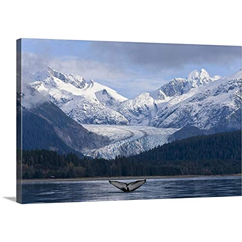 GREATBIGCANVAS Gallery-Wrapped Canvas Entitled Fluke of A Humpback Whale Emerges from The Water, Southeast Alaska by John Hyde 30