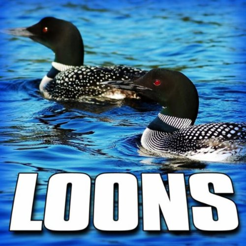 Loons (Nature Sound) By Sounds Of The Earth On Amazon
