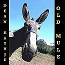 Old Mule