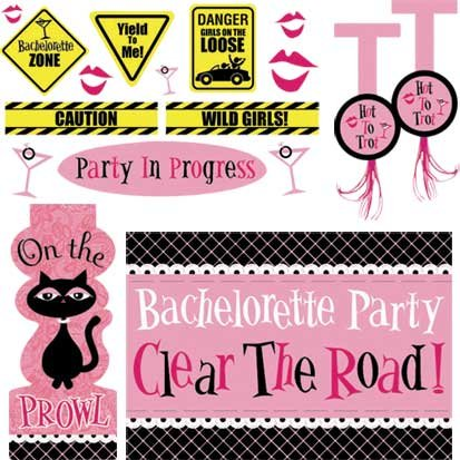 Bachelorette Party Car Decorating Kit 18pc ()