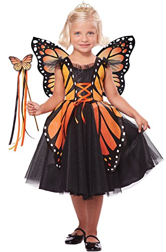 [California Costumes Monarch Princess Costume, One Color, 4-6] (Halloween Princess Costumes For Kids)