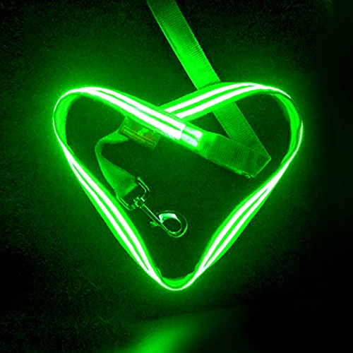 LED Dog Leash - USB Rechargeable - Make you & your dog visible - 5 Colours (Blue, Red, Green, Lime and Pink) - See matching rechargeable Collars (Lime)