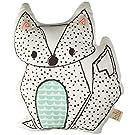 Lolli Living Sparrow Pillow, Fox