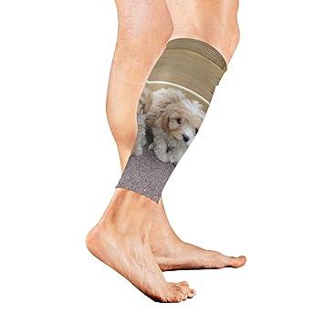 Amazon com: Leg Sleeve Cute Cavachon Puppies Dogs Compression Socks