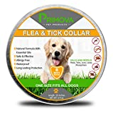 Dog Flea Treatment Collar - Primova Pet Products Flea Tick Prevention Collar Dogs - Non Toxic Natural Essential Oils Bio - Waterproof - Long Lasting 8 Month Protection - Safe & Hypoallergenic - One Size Fits All