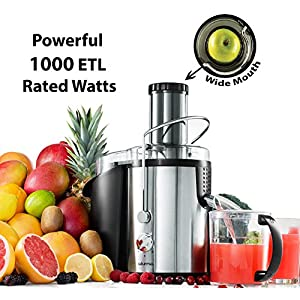 Gourmia GJ1250 Wide Mouth Fruit Centrifugal Juicer - Juice Extractor with Multiple Settings 32 oz - Stainless Steel… 2