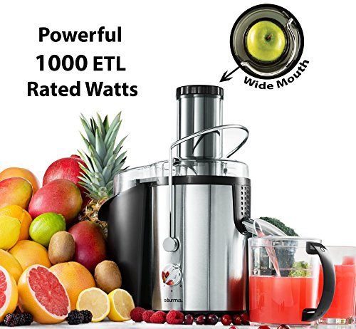 Gourmia GJ1250 Wide Mouth Fruit Centrifugal Juicer - Juice Extractor with Multiple Settings 32 oz -...