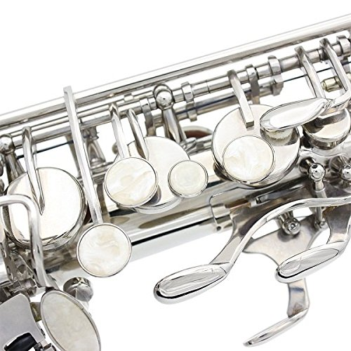 LADE Alto Eb Silver Saxophone Sax Paint Silver With Case with Accessories by SOUND HOUSE 40 (Image #3)