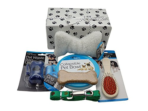 New Puppy Gift Box with Paw Print Wrapping Paper