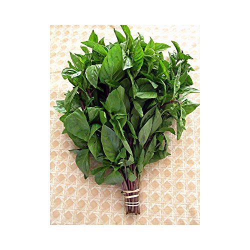 Fresh Basil (Thai Sweet Basil Fresh 1/2 Lb ( 8 Oz.))