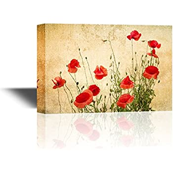 Amazon.com: Beautiful Bright Red California Poppies; Four 12x12-Inch ...