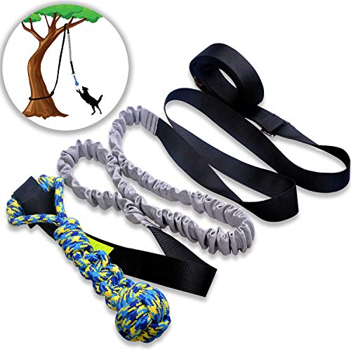 LOOBANI Dog Outdoor Bungee Hanging Toy,Interactive Tether Tug Toy for Pitbull & Small to Large Dogs to Exercise & Solo Play,Durable Tugger for Tug of War,with Chew Rope Toy