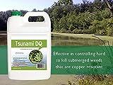 Tsunami DQ Aquatic Herbicide - 37.3 Percent