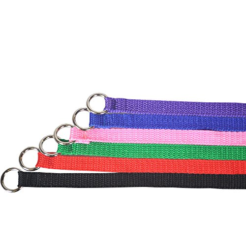 Downtown Pet Supply 6 Foot Slip Lead, Slip Leads, Kennel Leads with O Ring for Dog Pet Animal Control Grooming, Shelter, Rescues, Vet, Veterinarian, Doggy Daycare (60 Pack, Colors: Various) by Downtown Pet Supply (Image #2)