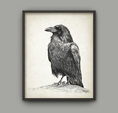 HYD Art Black and White Raven Canvas Wall Art Frame Poster for Living Room Decoration 8 x 10 Inches,Stretched and Ready to (Raven Fabric Black Frame)